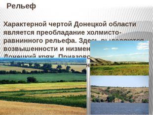 Рельеф Характерной чертой Донецкой области является преобладание холмисто- ра