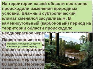 На территории нашей области постоянно происходили изменения природных условий