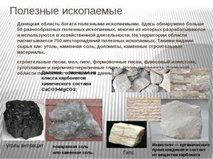 Полезные ископаемые Донецкая область богата полезными ископаемыми. Здесь обна