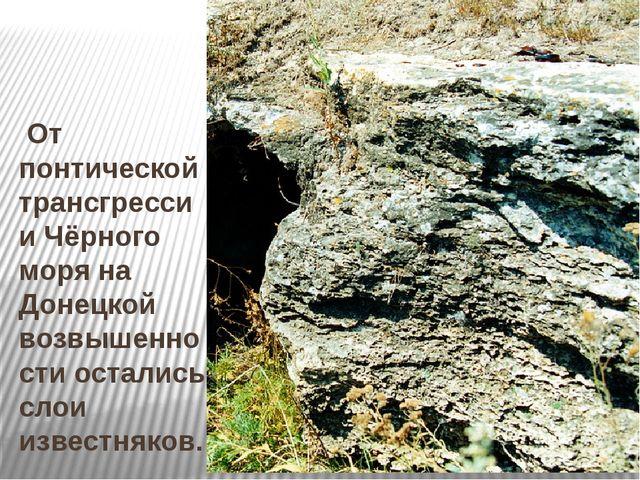 От понтической трансгрессии Чёрного моря на Донецкой возвышенности остались...