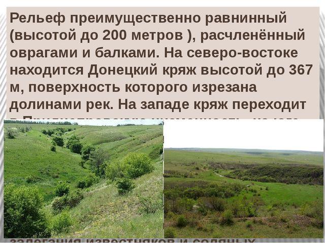Рельеф преимущественно равнинный (высотой до 200 метров ), расчленённый овраг...