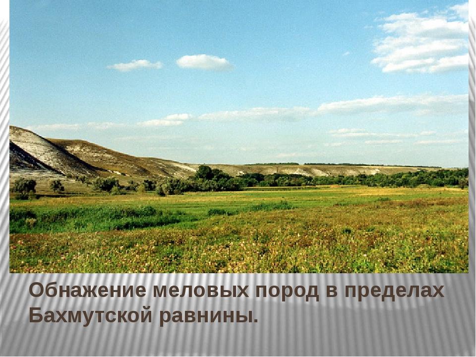 Обнажение меловых пород в пределах Бахмутской равнины.
