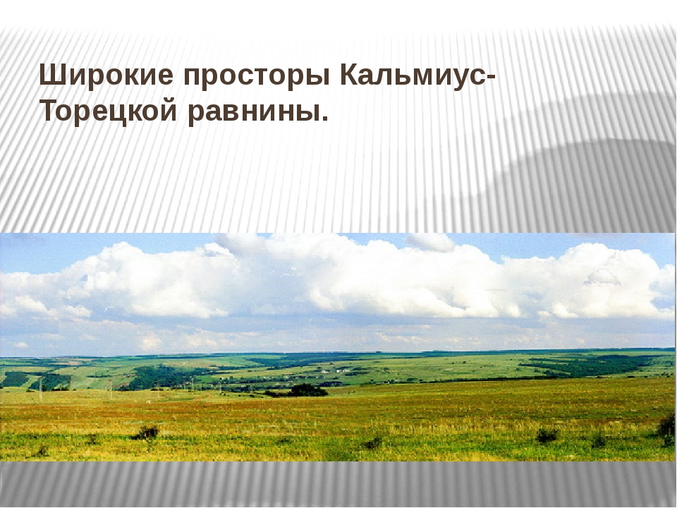 Широкие просторы Кальмиус-Торецкой равнины.