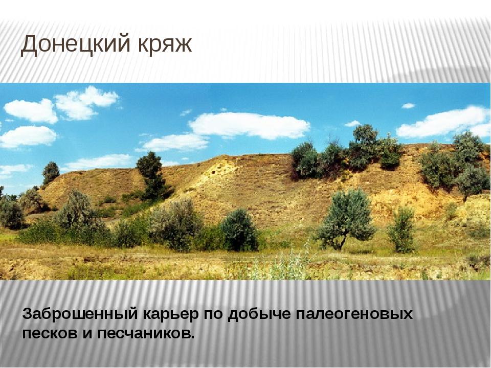 Донецкий кряж Заброшенный карьер по добыче палеогеновых песков и песчаников.