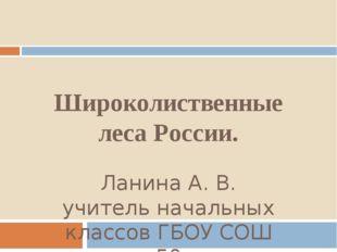 Широколиственные леса России. Ланина А. В. учитель начальных классов ГБОУ СОШ