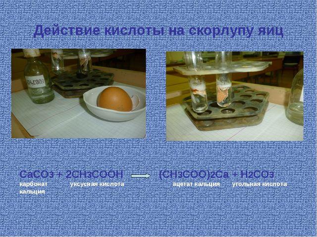 Действие кислоты на скорлупу яиц CaCO3 + 2CH3COOH (CH3COO)2Ca + H2CO3 карбона...