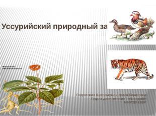 Уссурийский природный заповедник Подготовил Щеголькова Лариса Борисовна Педаг