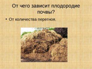 От чего зависит плодородие почвы? От количества перегноя.