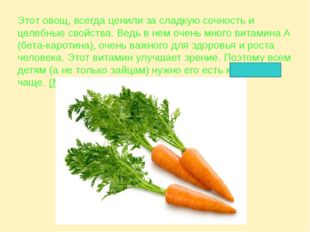 Этот овощ, всегда ценили за сладкую сочность и целебные свойства. Ведь в нем