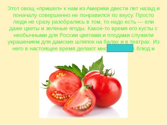 Этот овощ «пришел» к нам из Америки двести лет назад и поначалу совершенно не...