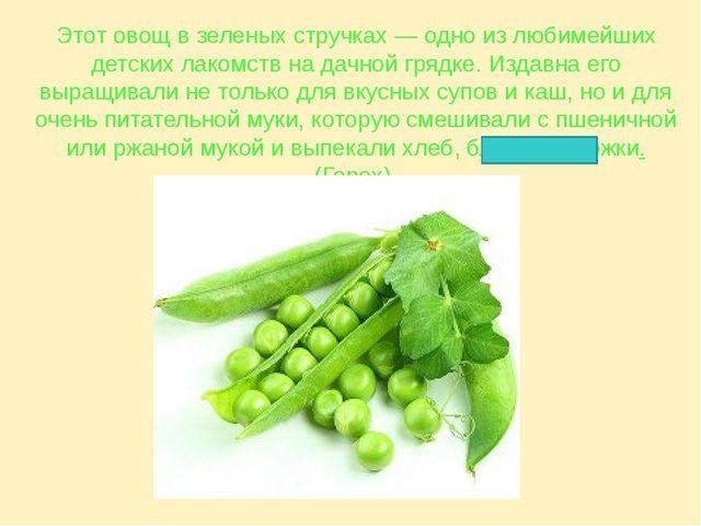 Этот овощ в зеленых стручках — одно из любимейших детских лакомств на дачной...