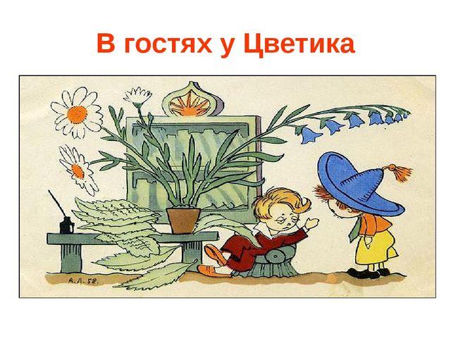 В гостях у Цветика