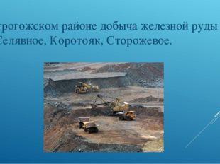 В Острогожском районе добыча железной руды у сёл: Селявное, Коротояк, Сторож
