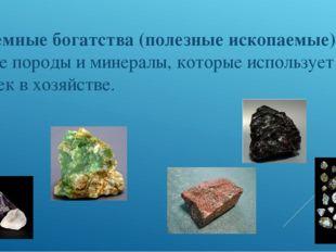 Подземные богатства (полезные ископаемые)- горные породы и минералы, которые