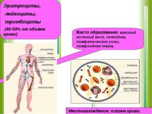 Форменные элементы крови Эритроциты, лейкоциты, тромбоциты (40-50% от объёма