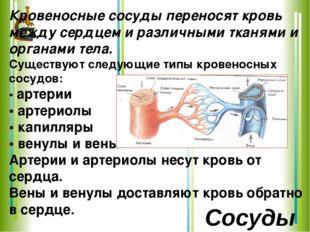 Кровеносные сосуды переносят кровь между сердцем и различными тканями и орган