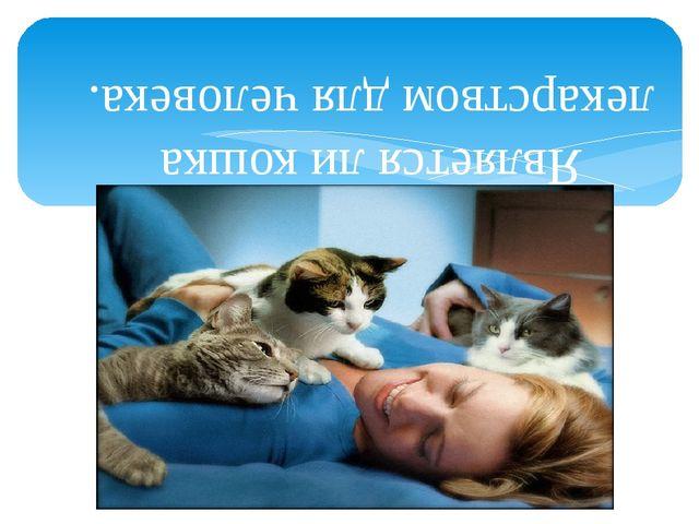 Является ли кошка лекарством для человека.