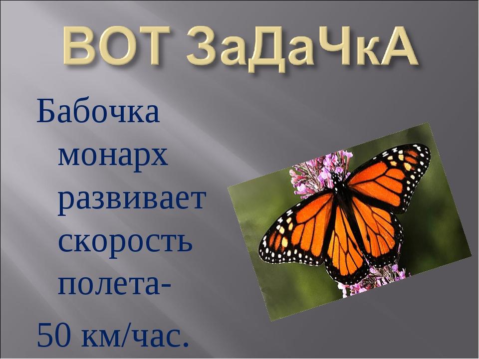 Бабочка монарх развивает скорость полета- 50 км/час.