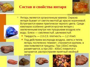 Янтарь является органогенным камнем. Окраска янтаря бывает от светло-желтой д