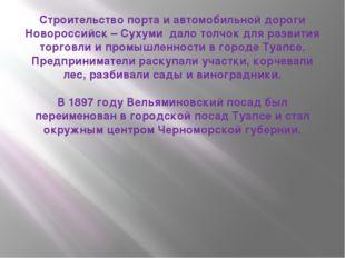 Строительство порта и автомобильной дороги Новороссийск – Сухуми дало толчок