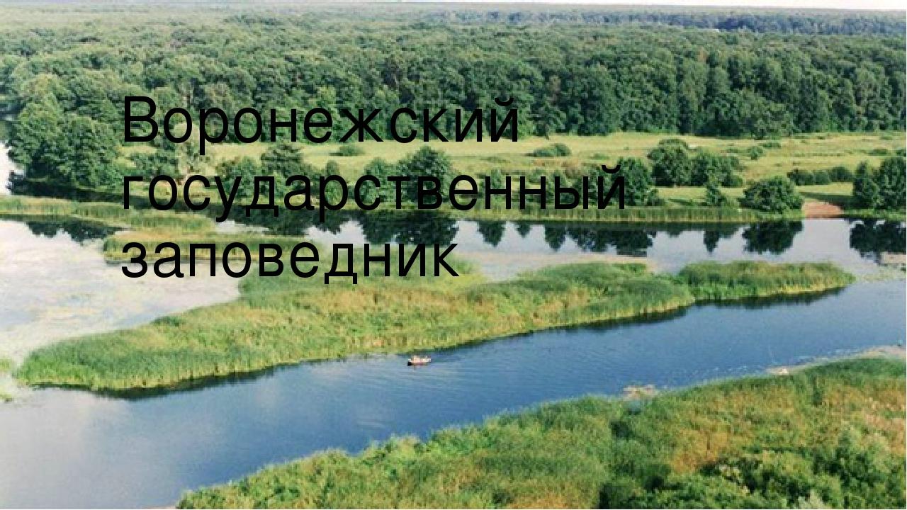 Воронежский государственный заповедник