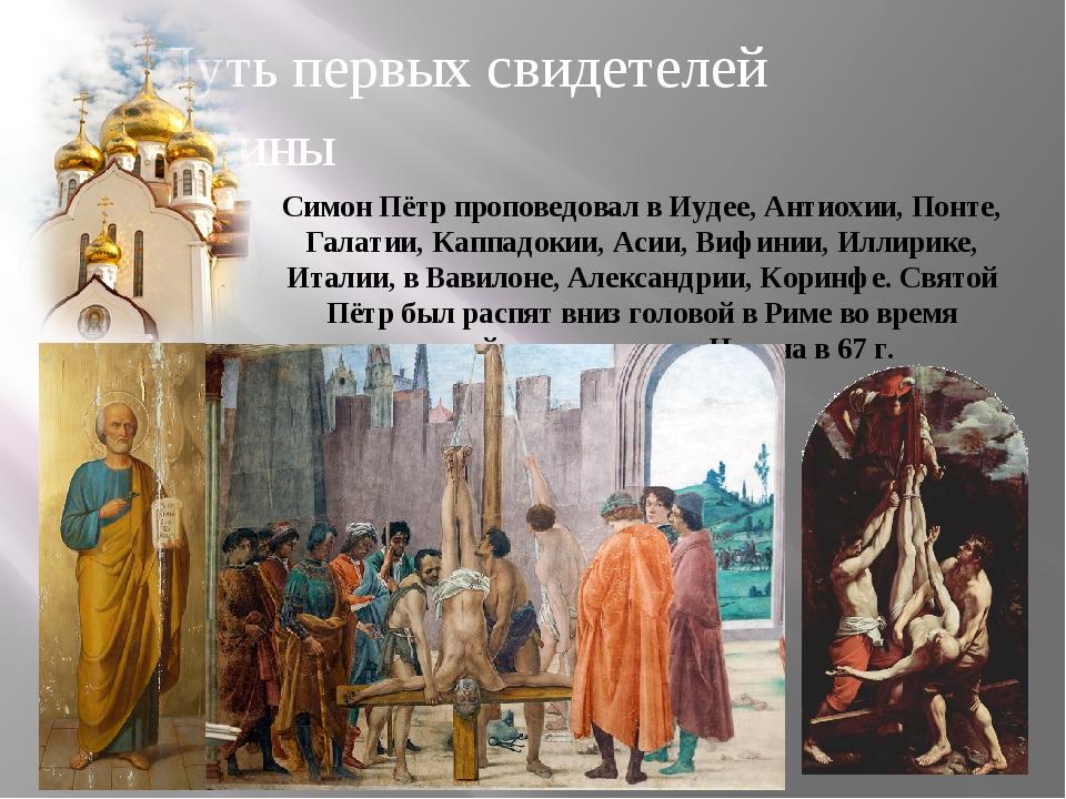 Путь первых свидетелей истины Симон Пётр проповедовал в Иудее, Антиохии, Понт...