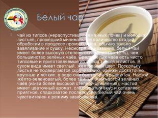 чай из типсов (нераспустившихся чайных почек) и молодых листьев, прошедший ми