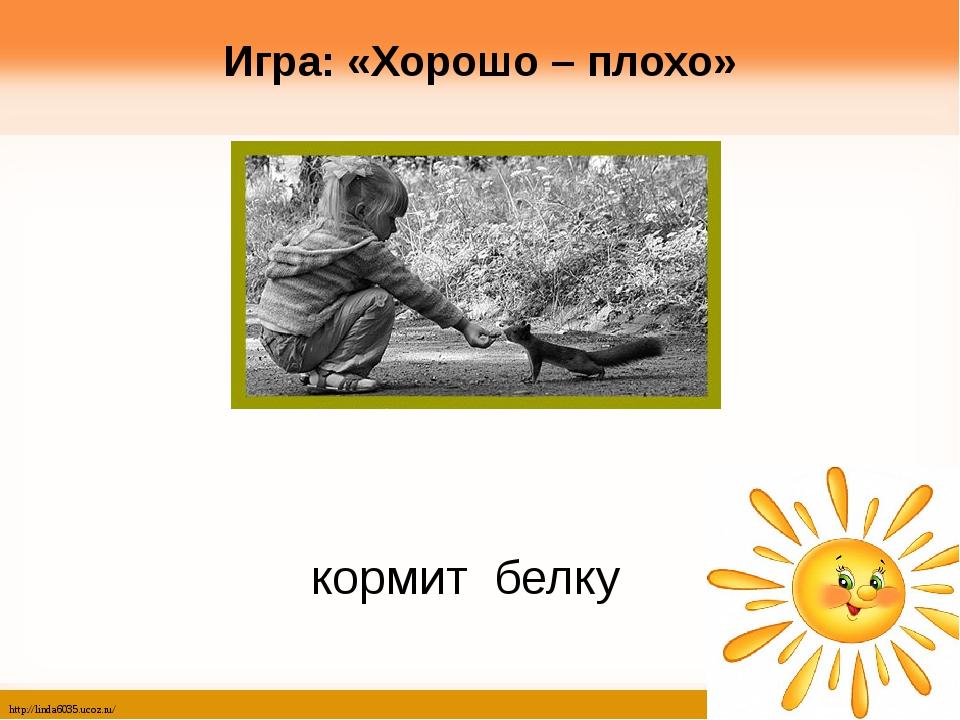 Игра: «Хорошо – плохо» кормит белку http://linda6035.ucoz.ru/
