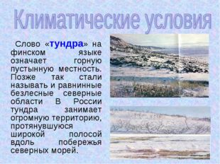 Слово «тундра» на финском языке означает горную пустынную местность. Позже т
