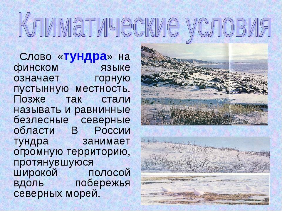 Слово «тундра» на финском языке означает горную пустынную местность. Позже т...