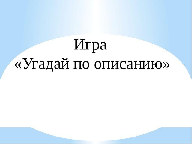 Игра «Угадай по описанию»