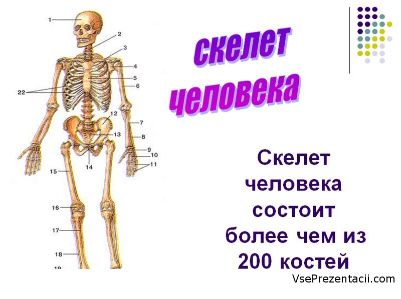 hello_html_745b3914.jpg