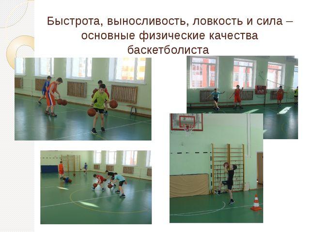Быстрота, выносливость, ловкость и сила – основные физические качества баскет...