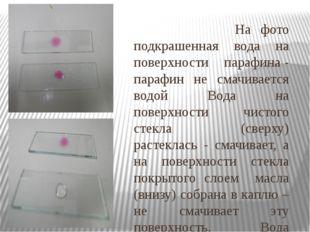 На фото подкрашенная вода на поверхности парафина - парафин не смачивается в