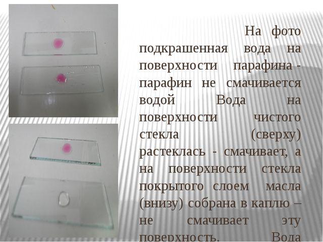 На фото подкрашенная вода на поверхности парафина - парафин не смачивается в...