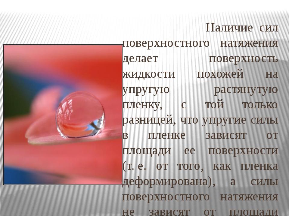 Наличие сил поверхностного натяжения делает поверхность жидкости похожей на...