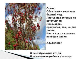 Осень! Обсыпается весь наш бедный сад, Листья пожелтелые по ветру летят; Лишь
