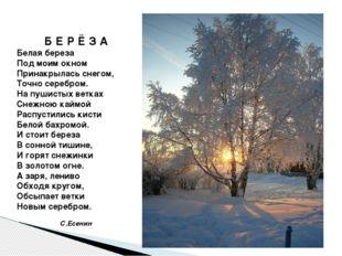 Б Е Р Ё З А Белая береза Под моим окном Принакрылась снегом, Точно серебром.
