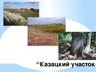 Казацкий участок