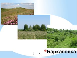 Баркаловка