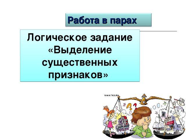 Логическое задание «Выделение существенных признаков»