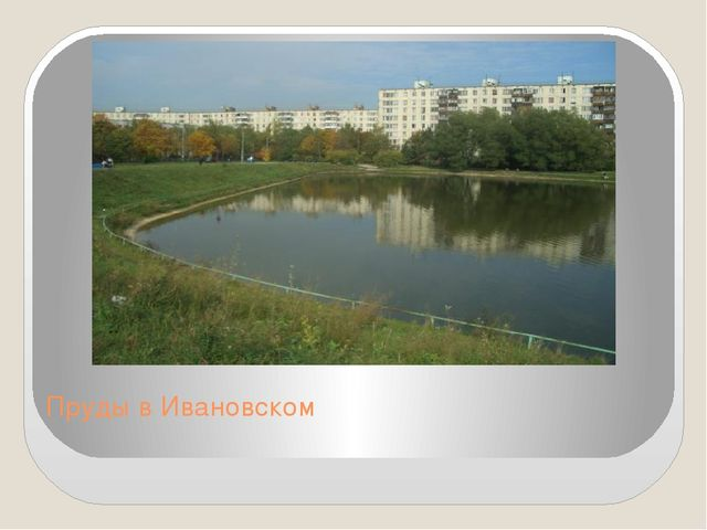 Пруды в Ивановском