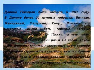 Долина Гейзеров была открыта в 1941 году. В Долине более 20 крупных гейзеров: