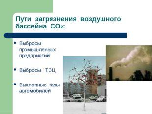 Пути загрязнения воздушного бассейна СО2: Выбросы промышленных предприятий Вы