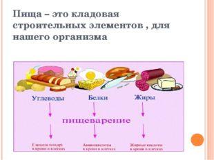 Пища – это кладовая строительных элементов , для нашего организма