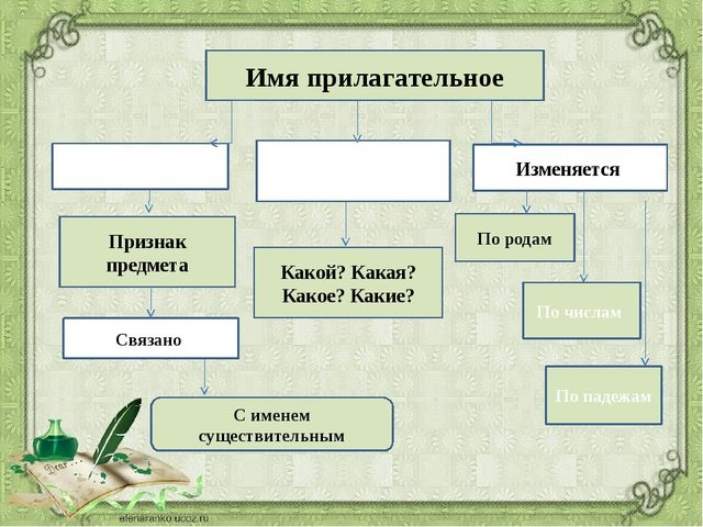 Имя прилагательное Обозначает Отвечает на вопросы Изменяется Признак предмета...
