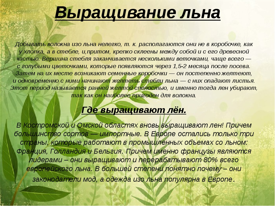 Специалист по выращиванию льна 43