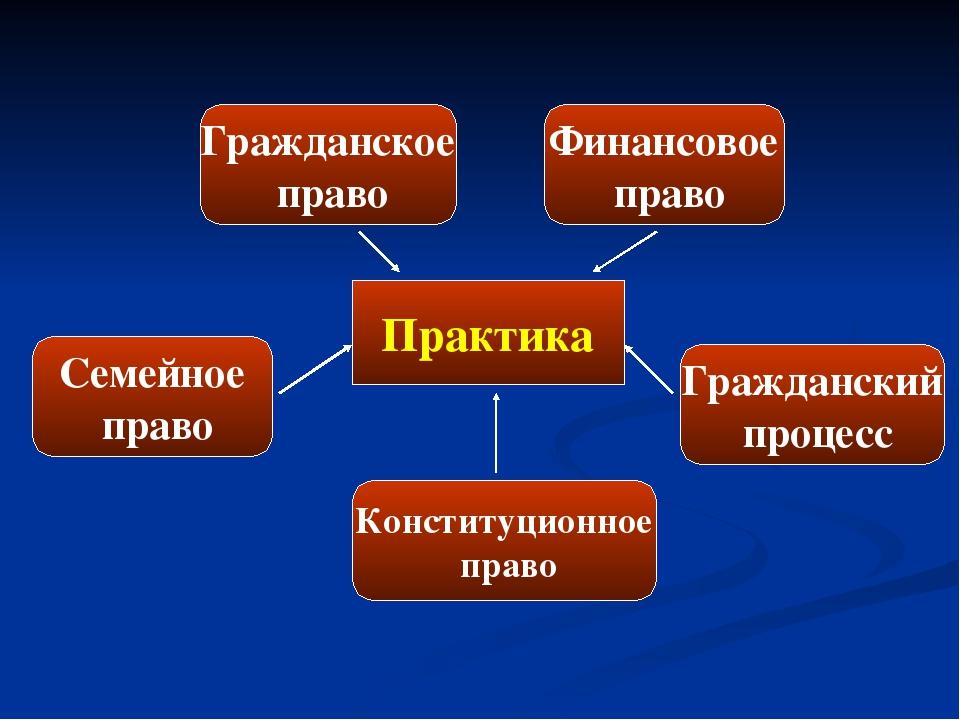 Практика Гражданское право Семейное право Гражданский процесс Конституционное...