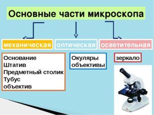 Основные части микроскопа механическая Основание Штатив Предметный столик Туб