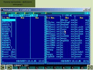 Файловая панель Строка состояния Панель функциональных клавиш Текущий катало